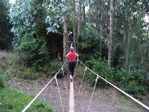 Tour Guiados
